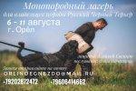 56450535_1541120492688444_4879653254272647168_n.jpg